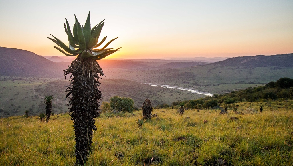 Babanango Game Reserve view. Photo courtesy of Chris Galliers